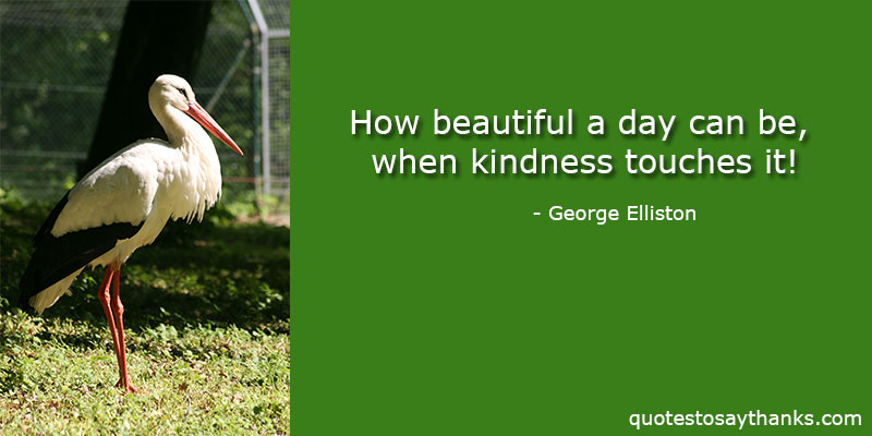 George Elliston Quotes