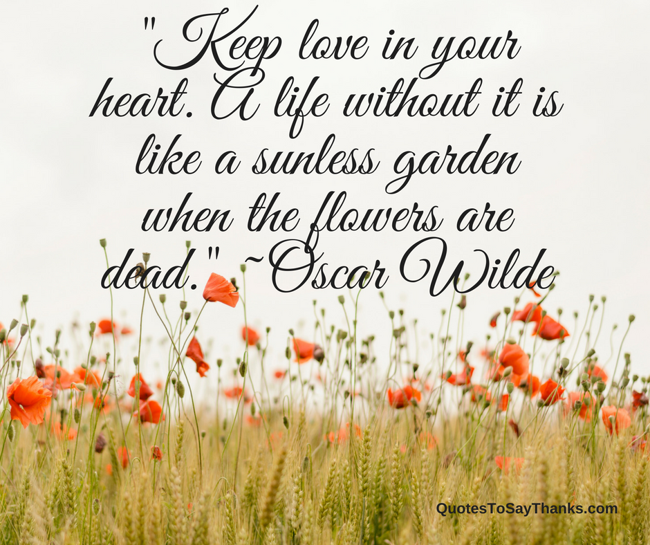 Garden Love Quotes Inspiration Thank You Love Quote  Love In Your Heart  Thank You Quotes