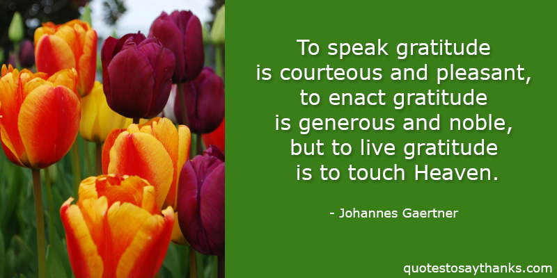 Johannes Gaertner Quotes