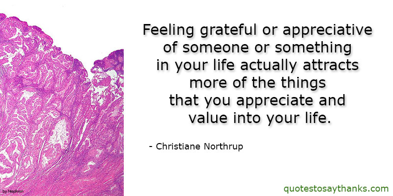 Christiane Northrup Quotes